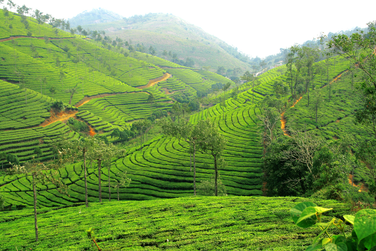 Nepal Tour Packages From Kerala