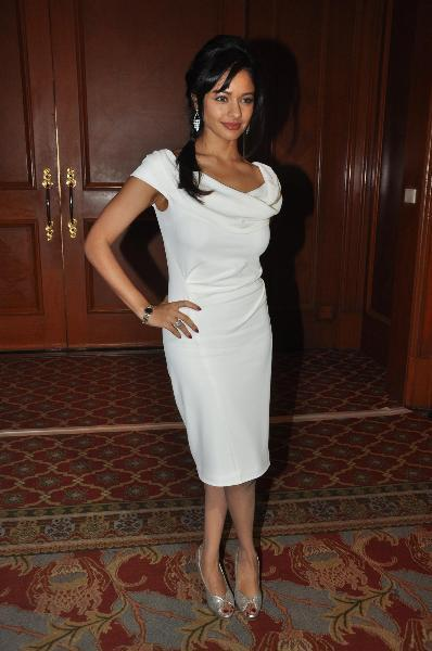 Pooja Kumar at film VISHWAROOPPremiere tie up with VIDEOCON DTH announcement event in Mumbai  10