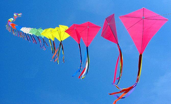 Makar Sankranti Kite Flying Pic